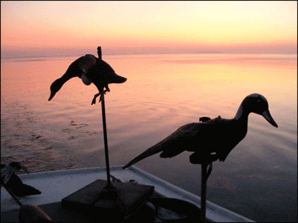 SunriseDecoys