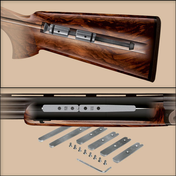 Blaser F16 Achieves Air Supremacy with New Sporter and Game